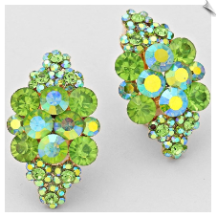 Clip Earrings - Fashion (SKU: SOL5945)