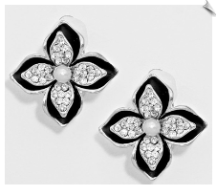 Clip Earrings - Fashion Classic (SKU: SOL5641)