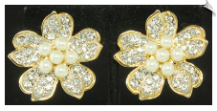 Clip Earrings - Fashion (SKU: SOL6011)